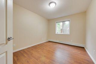 Photo 32:  in Edmonton: Zone 12 Condo for sale : MLS®# E4198383