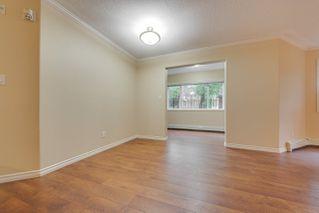 Photo 24:  in Edmonton: Zone 12 Condo for sale : MLS®# E4198383
