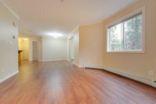 Photo 23:  in Edmonton: Zone 12 Condo for sale : MLS®# E4198383
