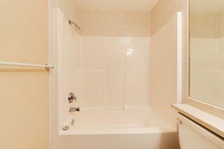 Photo 35:  in Edmonton: Zone 12 Condo for sale : MLS®# E4198383