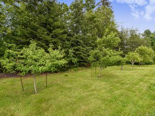 Photo 23: 4648 Montrose Dr in COURTENAY: CV Courtenay South House for sale (Comox Valley)  : MLS®# 840199