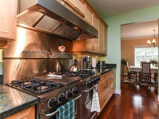 Photo 41: 4648 Montrose Dr in COURTENAY: CV Courtenay South House for sale (Comox Valley)  : MLS®# 840199