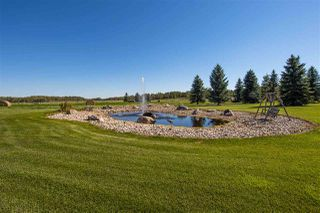 Photo 41: 52277 RGE RD 225: Rural Strathcona County House for sale : MLS®# E4213790