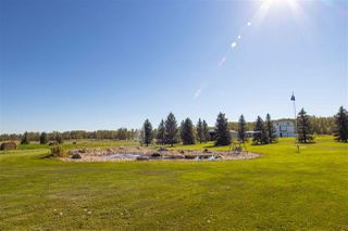 Photo 42: 52277 RGE RD 225: Rural Strathcona County House for sale : MLS®# E4213790
