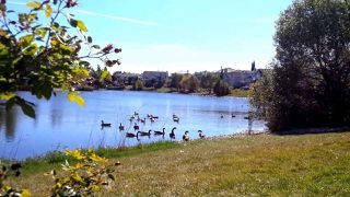 Photo 19: 68 303 TWIN BROOKS Drive in Edmonton: Zone 16 House Half Duplex for sale : MLS®# E4168882