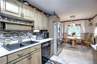 Photo 4: 247 MADDOCK Way NE in Calgary: Marlborough Park Detached for sale : MLS®# C4298026