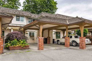 """Photo 23: 22741 GILLEY Avenue in Maple Ridge: East Central Townhouse for sale in """"CEDAR GROVE 2"""" : MLS®# R2480697"""