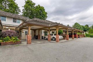 """Photo 38: 22741 GILLEY Avenue in Maple Ridge: East Central Townhouse for sale in """"CEDAR GROVE 2"""" : MLS®# R2480697"""