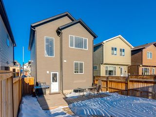 Photo 29: 69 AUTUMN Terrace SE in Calgary: Auburn Bay Detached for sale : MLS®# A1058520