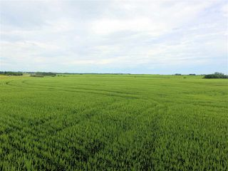 Main Photo: Township 561 Highway #44: Rural Sturgeon County Rural Land/Vacant Lot for sale : MLS®# E4207704