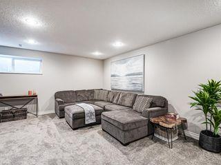 Photo 26: 252 QUARRY PARK Boulevard SE in Calgary: Douglasdale/Glen Row/Townhouse for sale : MLS®# A1045762