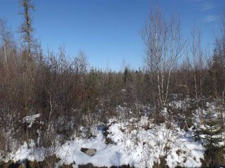 Photo 3: Lot 1A Charles Drive in Mount Uniacke: 105-East Hants/Colchester West Vacant Land for sale (Halifax-Dartmouth)  : MLS®# 202100552