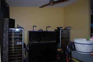 Photo 8: 15 LANDSDOWNE Drive: Spruce Grove House for sale : MLS®# E4182301