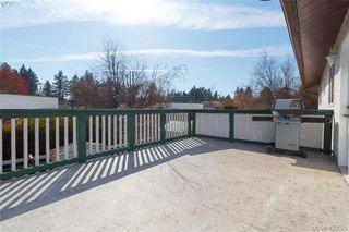 Photo 22: 1927 Cultra Ave in SAANICHTON: CS Saanichton Single Family Detached for sale (Central Saanich)  : MLS®# 836406