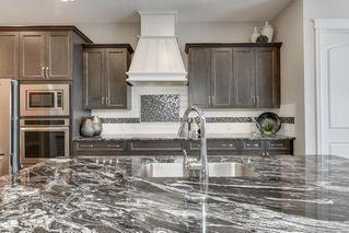 Photo 14:  in Edmonton: Zone 56 House for sale : MLS®# E4207752