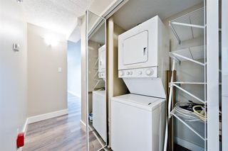 Photo 10: 201 315 9A Street NW in Calgary: Sunnyside Apartment for sale : MLS®# A1035488