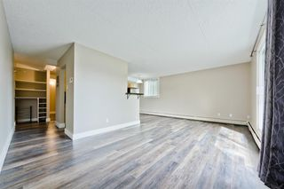 Photo 4: 201 315 9A Street NW in Calgary: Sunnyside Apartment for sale : MLS®# A1035488