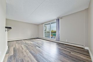 Photo 3: 201 315 9A Street NW in Calgary: Sunnyside Apartment for sale : MLS®# A1035488