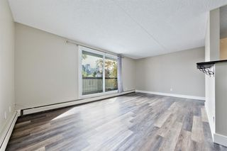 Photo 6: 201 315 9A Street NW in Calgary: Sunnyside Apartment for sale : MLS®# A1035488