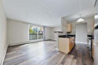 Photo 9: 201 315 9A Street NW in Calgary: Sunnyside Apartment for sale : MLS®# A1035488