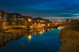 Photo 30: 2308 FREZENBERG Avenue in Edmonton: Zone 27 House for sale : MLS®# E4187677