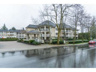 "Photo 1: 334 22020 49 Avenue in Langley: Murrayville Condo for sale in ""Murray Green"" : MLS®# R2440126"
