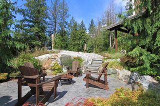 Photo 4: 11 13210 SHOESMITH Crescent in Maple Ridge: Silver Valley House for sale : MLS®# R2442427