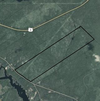 Photo 4: Lot East Sable Road in Sable River: 407-Shelburne County Vacant Land for sale (South Shore)  : MLS®# 202009218