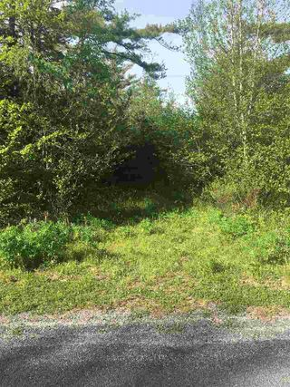 Photo 2: Lot East Sable Road in Sable River: 407-Shelburne County Vacant Land for sale (South Shore)  : MLS®# 202009218