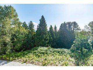"""Photo 18: 413 22315 122 Avenue in Maple Ridge: West Central Condo for sale in """"EMERSON"""" : MLS®# R2475719"""