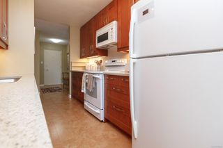 Photo 11: 401 415 Linden Ave in : Vi Fairfield West Condo Apartment for sale (Victoria)  : MLS®# 855926