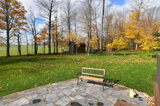 Photo 35: 141 Birch Grove: Shelburne House (Bungalow) for sale : MLS®# X4970064