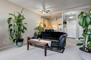 Main Photo: 206 4908 17 Avenue SE in Calgary: Forest Lawn Apartment for sale : MLS®# C4305197