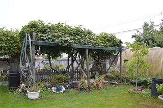 Photo 4: 2869 9th Ave in : PA Port Alberni House for sale (Port Alberni)  : MLS®# 857990