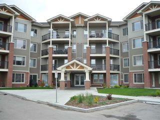 Photo 1: 403 3719 WHITELAW Lane in Edmonton: Zone 56 Condo for sale : MLS®# E4182404