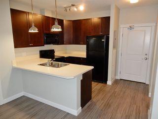 Photo 2: 403 3719 WHITELAW Lane in Edmonton: Zone 56 Condo for sale : MLS®# E4182404