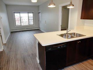 Photo 4: 403 3719 WHITELAW Lane in Edmonton: Zone 56 Condo for sale : MLS®# E4182404
