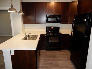 Photo 3: 403 3719 WHITELAW Lane in Edmonton: Zone 56 Condo for sale : MLS®# E4182404