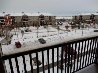 Photo 16: 403 3719 WHITELAW Lane in Edmonton: Zone 56 Condo for sale : MLS®# E4182404
