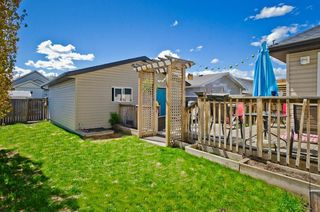 Photo 31: 68 PRESTWICK Close SE in Calgary: McKenzie Towne Detached for sale : MLS®# C4297960