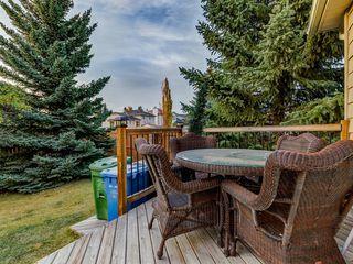 Photo 43: 5 SUNVISTA Crescent SE in Calgary: Sundance Detached for sale : MLS®# A1042796