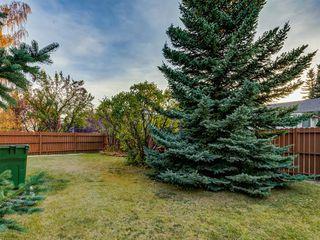 Photo 44: 5 SUNVISTA Crescent SE in Calgary: Sundance Detached for sale : MLS®# A1042796
