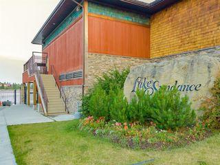 Photo 46: 5 SUNVISTA Crescent SE in Calgary: Sundance Detached for sale : MLS®# A1042796