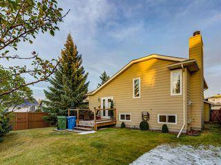 Photo 41: 5 SUNVISTA Crescent SE in Calgary: Sundance Detached for sale : MLS®# A1042796