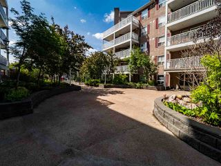 Photo 33: 103 10933 124 Street in Edmonton: Zone 07 Condo for sale : MLS®# E4202766