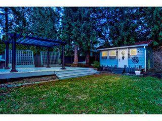 Photo 20: 12130 GLENHURST Street in Maple Ridge: East Central House for sale : MLS®# R2424742