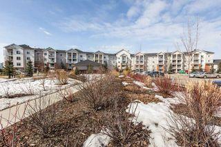 Photo 4: 320 920 156 Street in Edmonton: Zone 14 Condo for sale : MLS®# E4194122