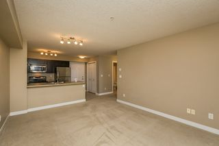 Photo 16: 320 920 156 Street in Edmonton: Zone 14 Condo for sale : MLS®# E4194122