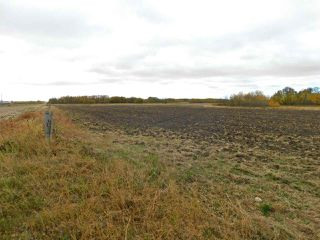 Photo 6: RR240 betw Twp 580 & 582 (north 1/2): Rural Sturgeon County Rural Land/Vacant Lot for sale : MLS®# E4216486