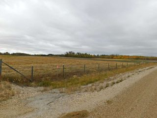 Photo 3: RR240 betw Twp 580 & 582 (north 1/2): Rural Sturgeon County Rural Land/Vacant Lot for sale : MLS®# E4216486